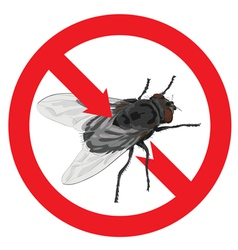 Flies banned Sign prohibited vector image vector image