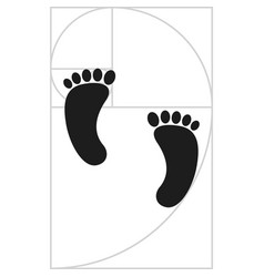 Footprint with fibonacci spiral vector