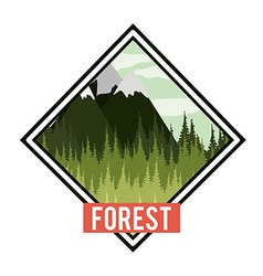 Forest design vector image