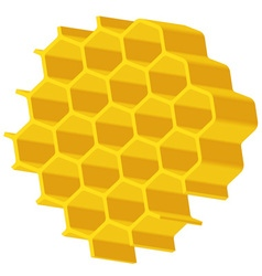 Hexagonal array vector