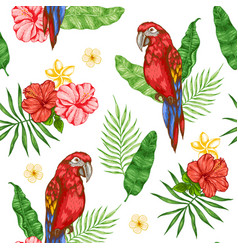 pattern with flowers and red parrot vector image