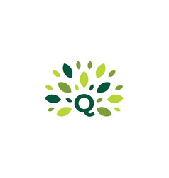 Q letter tree leaf nature mark green logo icon vector