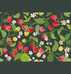 seamless raspberry pattern with summer berries vector image