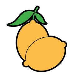 Two fruit citrus lemon juice icon vector