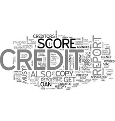 what is a credit report score text word cloud vector image