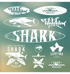 Graphic design for surfboard vector image vector image