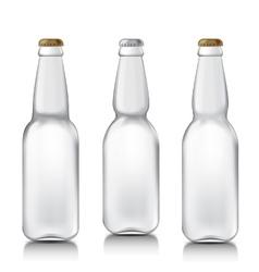 Set realistic glass bottles vector image