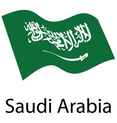 kingdom of saudi arabia vector image