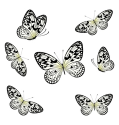 Stylized Butterflies Flying vector image