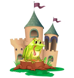 A frog in front a castle vector image vector image