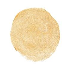 Gold acrylic paint circle vector image vector image