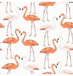 Exotic flamingo wading bird couples beak to beak vector image vector image