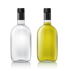 Template of glass bottle vector image