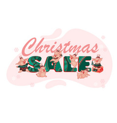 christmas sale banner with cute funny pigs vector image