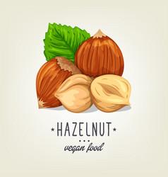 colourful hazelnut icon isolated on background vector image