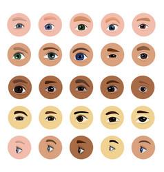 Eye human eyesight vision beauty female vector