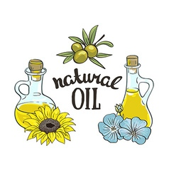 Set of bottles with sunflower linseed and olive vector