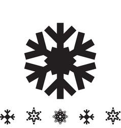 Snowflake icon isolated vector