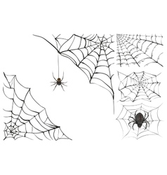 Web and black poisonous spider Set Halloween vector
