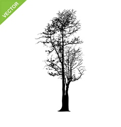 Dead tree silhouettes vector
