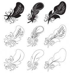 Fluff and feathers vector