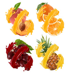 fruits and berries in splash of juice orange vector image