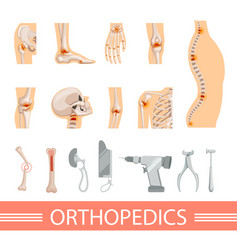 Orthopedic icons set human skeleton bones and vector