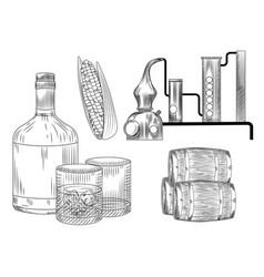 Set bourbon glass and bottle corn barrel vector