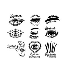 Set monochrome icons for eyelashes extension vector