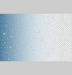 water drops on glass rain drops on transparent vector image