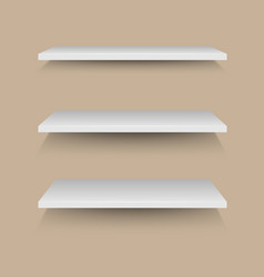 White shelves on brown wall vector image