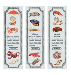 colorful sketch natural seafood vertical banners vector image