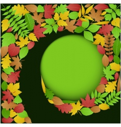 autumn leaves spiral background vector image vector image