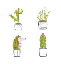 Cactus and succulent with hedgehog funny clipart vector