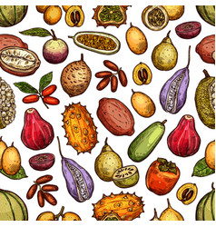 exotic tropic fruits tropical farm harvest vector image