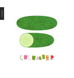 food patterns vegetable cucumber vector image