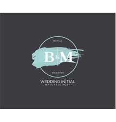 Initial bm letter beauty logo handwriting vector