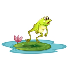 A frog at the pond vector image vector image