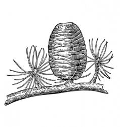 Pinecone vector