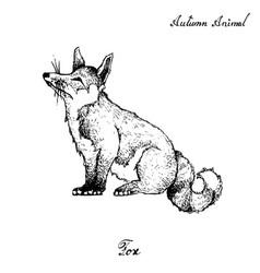 Autumn animal hand drawn fox isolated on vector