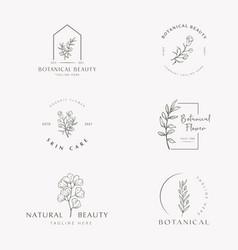Botanical floral element hand drawn logo vector