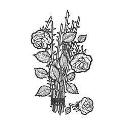 broken roses sketch engraving vector image