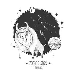 Card with astrology taurus zodiac sign vector