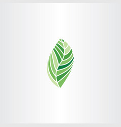natural bio leaf plant eco symbol element vector image