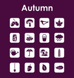 Set of autumn simple icons vector