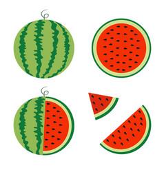 Watermelon icon set whole ripe green stem slice vector