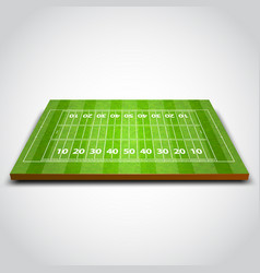 clear green rugby or soccer field vector image