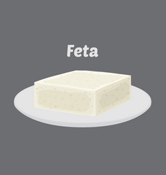 feta cheese on plate cartoon flat style vector image