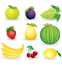ripe fruits set vector image vector image