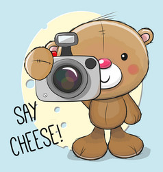 cute cartoon teddy bear with a camera vector image vector image